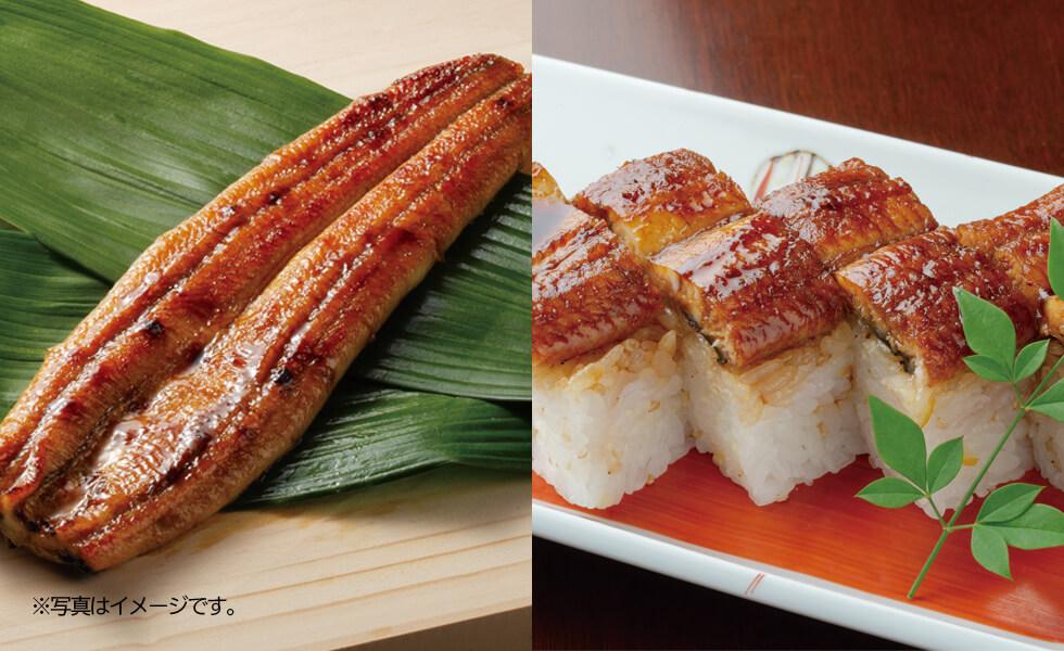 「竹」天の鰻セット