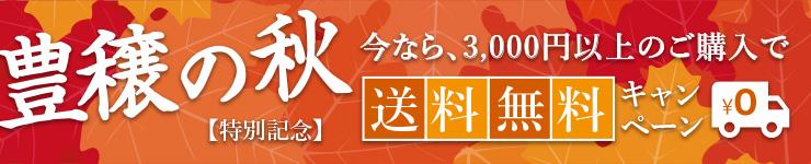3000円以上購入で送料無料キャンペーン